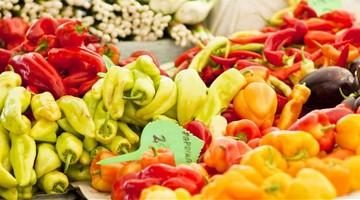 Fruit Logostica Messe