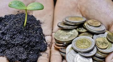 Nachhaltigkeit in der Supply Chain